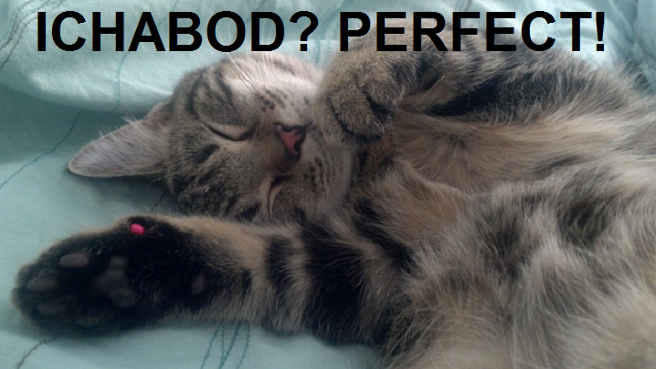 Ichabod Perfect